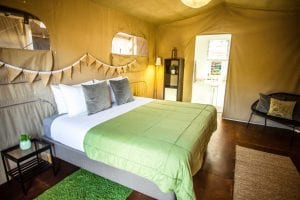 Blog 5 Top Reasons To Choose Glamping On Fraser Island